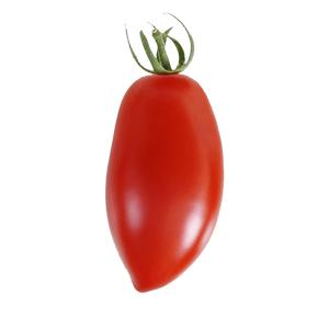 pomodorino-lungo-bollo-bianco