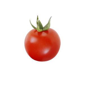pomodorino-tondo-bollo-bianco