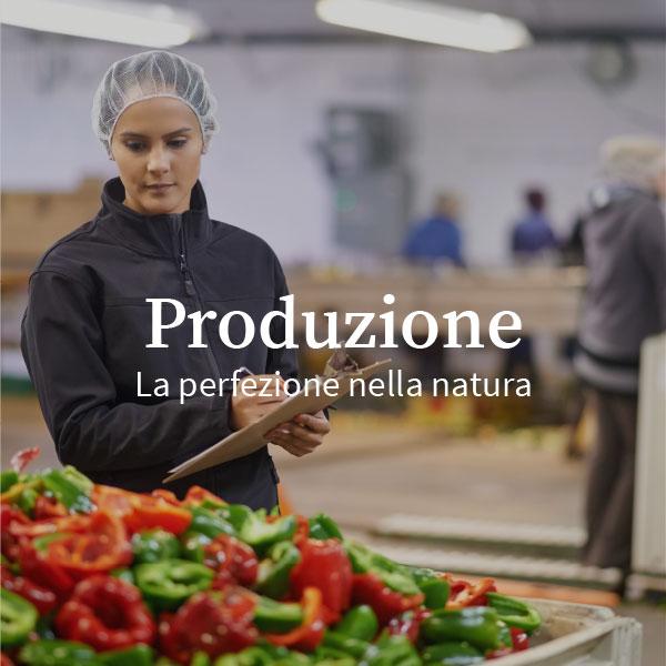 produzione_farris