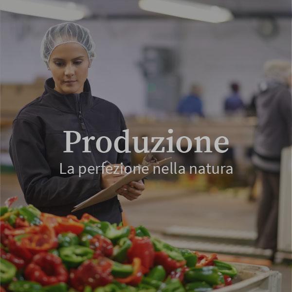produzione_farris_OVER
