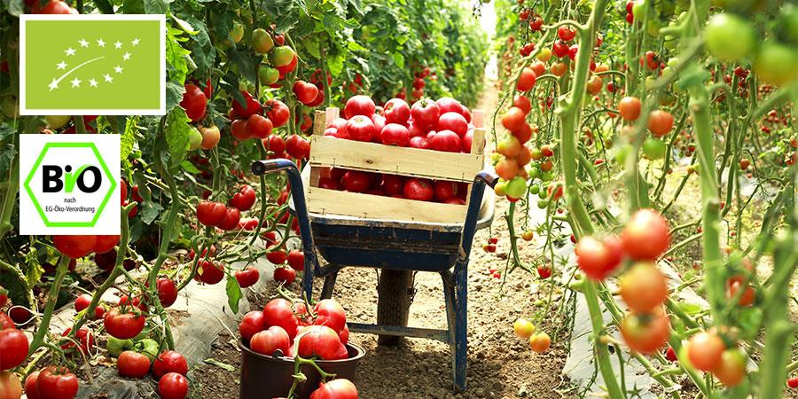 Farris Agricoltura Biologica