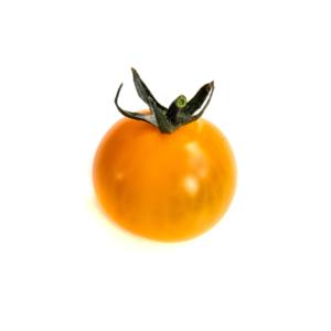 pomodorino_giallo